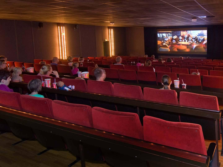 Schloss Dankern Kino